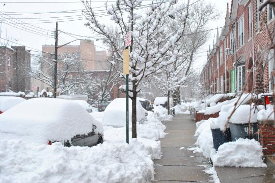 [snow view]