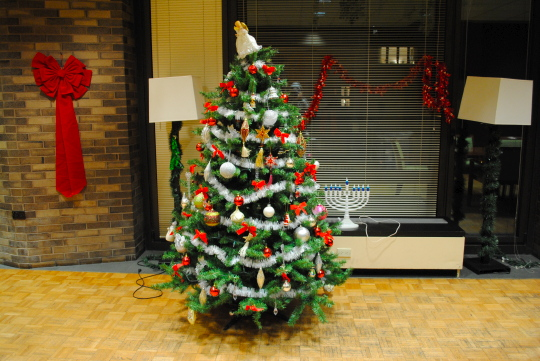 [Christmas tree in the Courant lounge